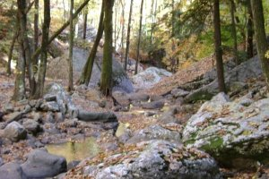 fall rocks creek